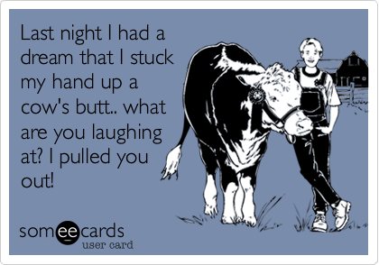 Last night I had a