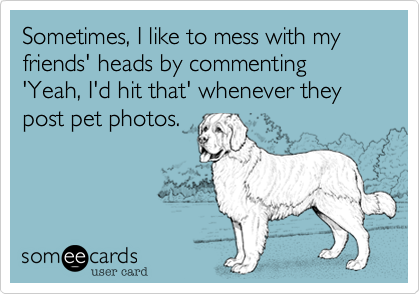 Sometimes, I like to mess with my friends' heads by commenting 'Yeah, I'd hit that' whenever they post pet photos.