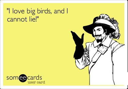 """I love big birds, and I cannot lie!"""
