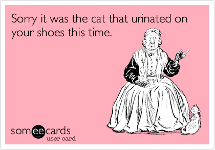 Sorry it was the cat that urinated on your shoes this time.