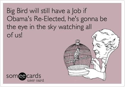 Big Bird will still have a Job if Obama's Re-Elected, he's gonna be the eye in the sky watching allof us!