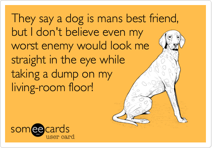 They say a dog is mans best friend, but I don't believe even myworst enemy would look mestraight in the eye whiletaking a dump on myliving-room floor!