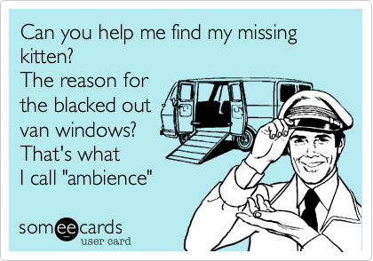 """Can you help me find my missing kitten?The reason forthe blacked outvan windows?That's whatI call """"ambience"""""""
