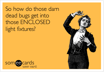 So how do those darndead bugs get intothose ENCLOSEDlight fixtures?