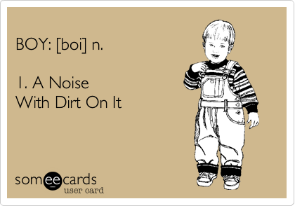 BOY: [boi] n.  1. A NoiseWith Dirt On It