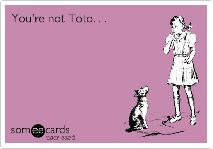 You're not Toto. . .