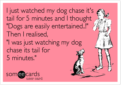 """I just watched my dog chase it'stail for 5 minutes and I thought""""Dogs are easily entertained..!""""Then I realised,""""I was just watching my dogchase its tail for5 minutes."""""""
