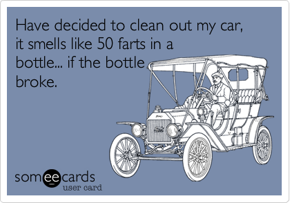 Have decided to clean out my car, it smells like 50 farts in a