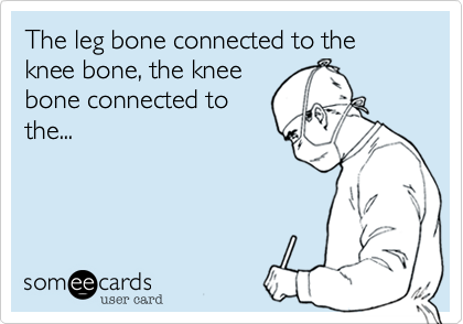 The leg bone connected to the knee bone, the knee
