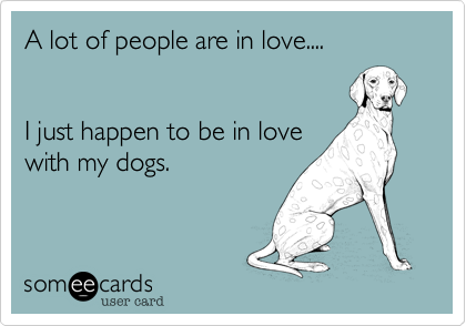 A lot of people are in love....I just happen to be in lovewith my dogs.