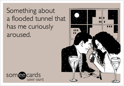 Something abouta flooded tunnel thathas me curiouslyaroused.