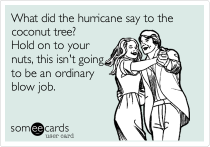 What did the hurricane say to the coconut tree?
