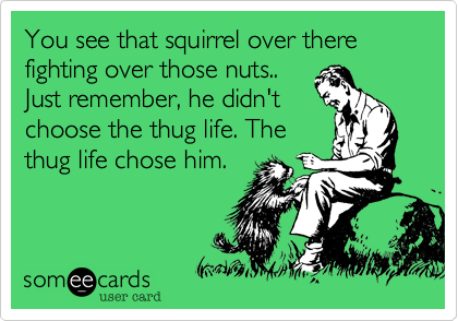 You see that squirrel over there fighting over those nuts..Just remember, he didn'tchoose the thug life. Thethug life chose him.