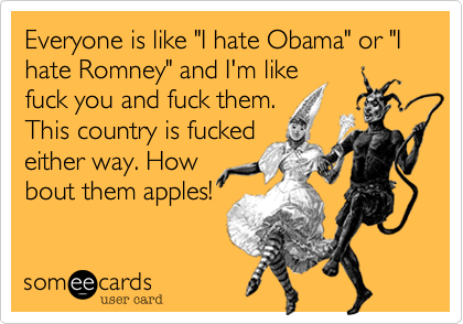 "Everyone is like ""I hate Obama"" or ""I hate Romney"" and I'm like