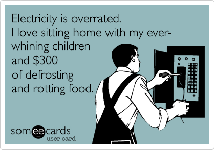 Electricity is overrated. I love sitting home with my ever-whining childrenand $300of defrostingand rotting food.