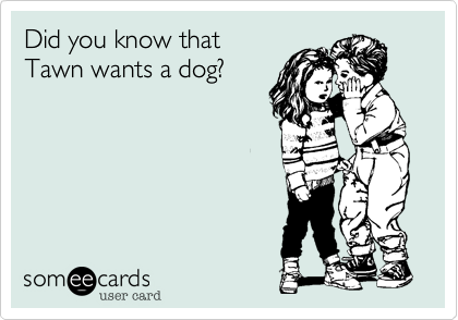 Did you know thatTawn wants a dog?