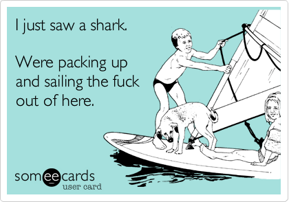 I just saw a shark.