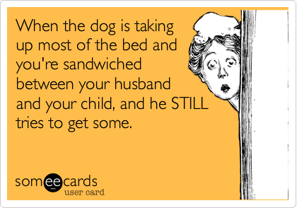 When the dog is takingup most of the bed andyou're sandwichedbetween your husbandand your child, and he STILLtries to get some.