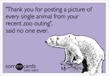 """Thank you for posting a picture of every single animal from your recent zoo outing"", 