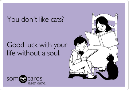 You don't like cats?Good luck with yourlife without a soul.