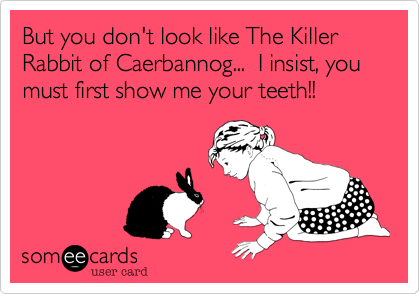 But you don't look like The Killer Rabbit of Caerbannog...  I insist, you must first show me your teeth!!