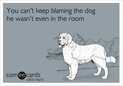 You can't keep blaming the dog