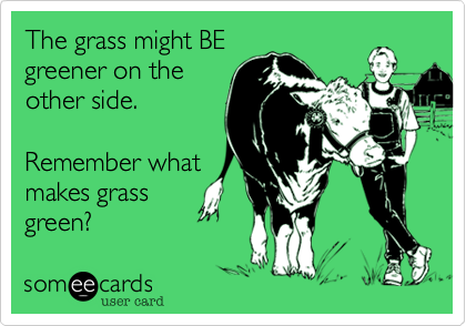 The grass might BE