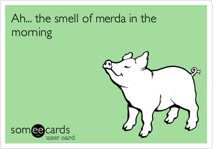 Ah... the smell of merda in the morning