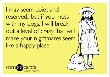 I may seem quiet and
