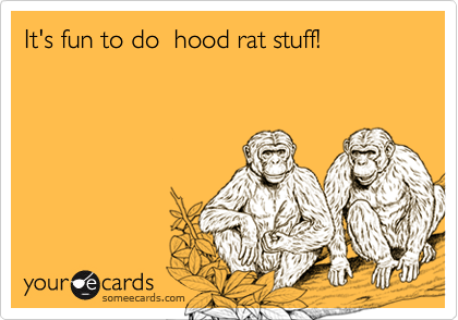 It's fun to do  hood rat stuff!