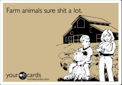 Farm animals sure shit a lot.
