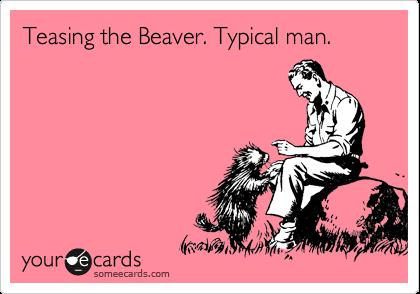 Teasing the Beaver. Typical man.