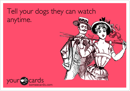 Tell your dogs they can watch anytime.