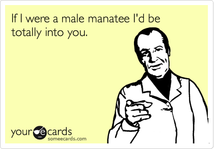 If I were a male manatee I'd be totally into you.