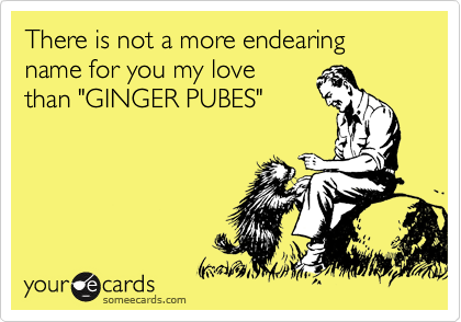 "There is not a more endearing name for you my love than ""GINGER PUBES"""