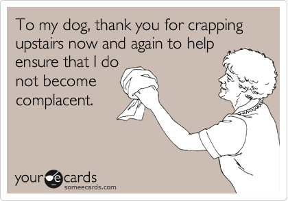 To my dog, thank you for crapping upstairs now and again to help
