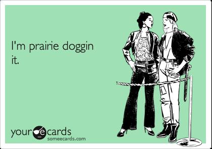 I'm prairie dogginit.