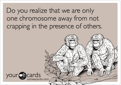 Do you realize that we are only one chromosome away from not crapping in the presence of others.