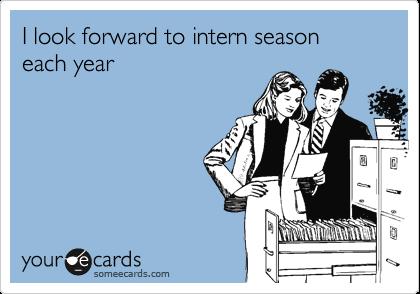 I look forward to intern season each year