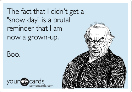 "The fact that I didn't get a  ""snow day"" is a brutal reminder that I am  now a grown-up.  Boo."
