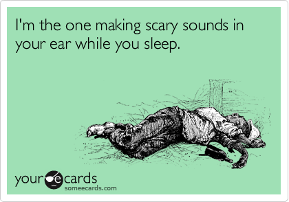 I'm the one making scary sounds in your ear while you sleep.