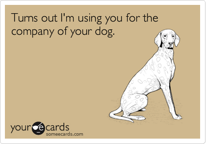 Turns out I'm using you for the company of your dog.