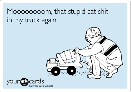 Moooooooom, that stupid cat shit in my truck again.