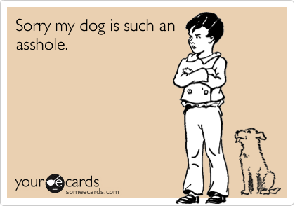 Sorry my dog is such anasshole.