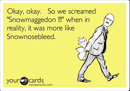 "Okay, okay.   So we screamed ""Snowmaggedon !!!"" when in reality, it was more like Snownosebleed."