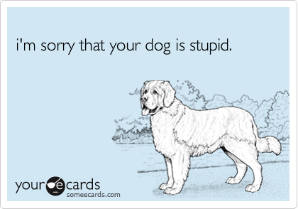i'm sorry that your dog is stupid.
