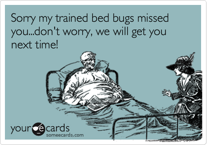 Sorry my trained bed bugs missed you...don't worry, we will get you next time!
