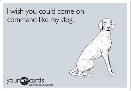 I wish you could come on command like my dog.