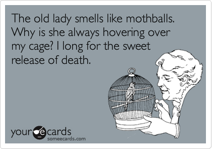 The old lady smells like mothballs. Why is she always hovering over my cage? I long for the sweetrelease of death.