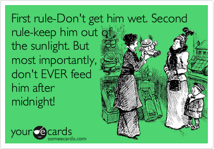 First rule-Don't get him wet. Second rule-keep him out of the sunlight. But most importantly, don't EVER feed him after midnight!